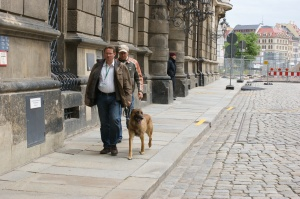 Sprengstoffspürhunde vor dem Stadtschloss.